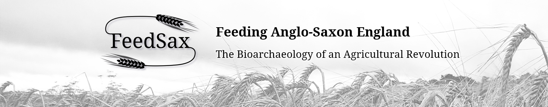 Feeding Anglo-Saxon England: The Bioarchaeology of an Agricultural Revolution